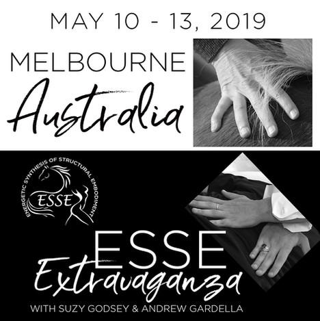 199510 Melbourne ESSE Extra 1200.jpg