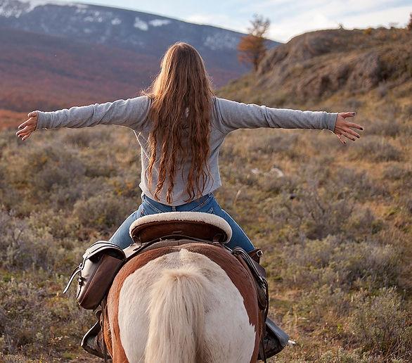 caballos y brazos estirados.jpg
