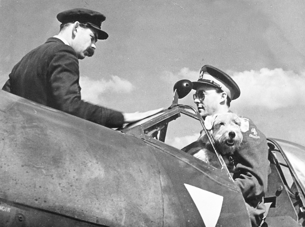 322 Flight Commander Kees van Eendenburg instructing Prince Bernhard and his fluffy companion Martin