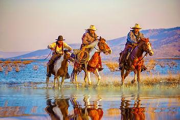 Jhoward western
