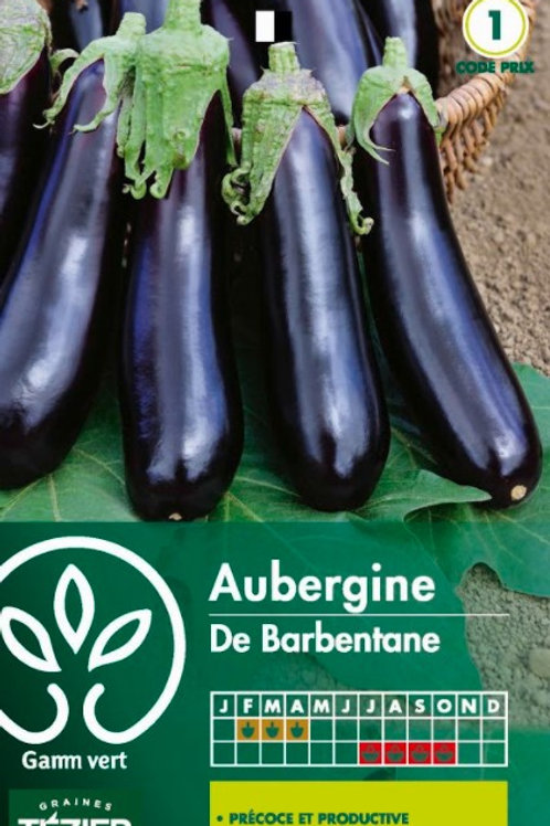 Graine aubergine barbantane s.1 Gamm Vert (ref : w35881)