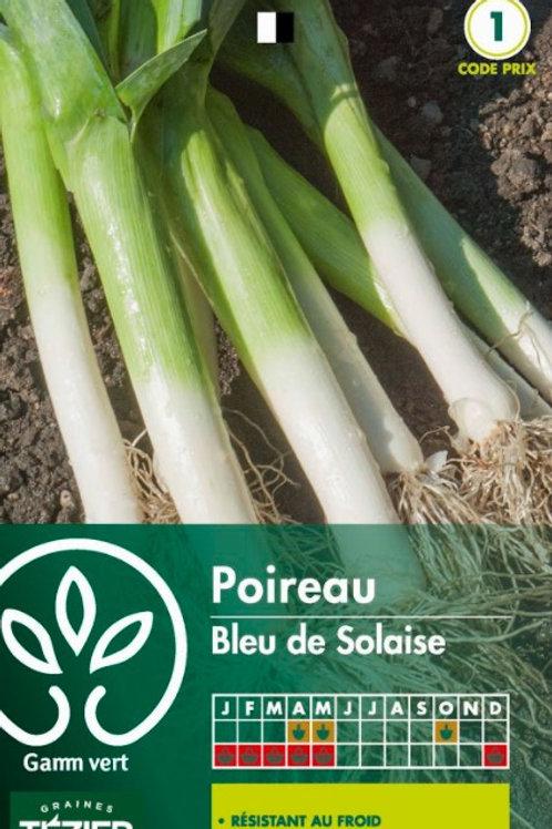 Graine poireau bleu de solaise s.1 Gamm Vert (ref : w36149)