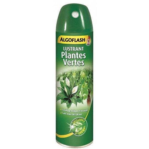 Lustrant plantes vertes 250ml algoflash (Ref : X78444)