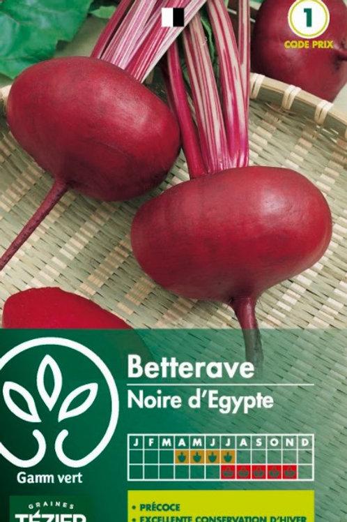 Graine betterave d'egypte  s.1 Gamm Vert (ref : w36370)