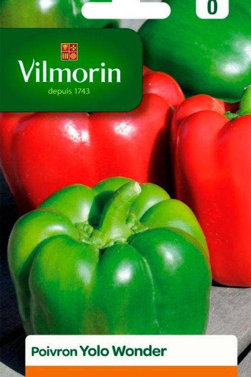 Graine poivron yolo wonder s.0 vilmorin (ref : w36743)