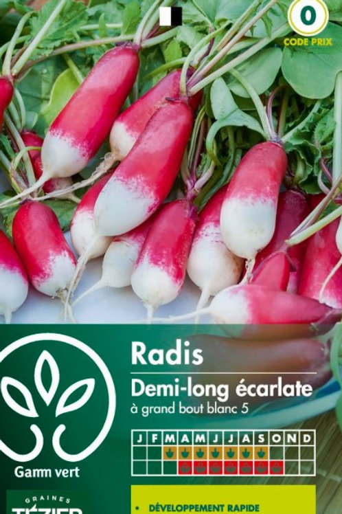 Graine radis ecarlate 1/2 long s.0 Gamm Vert (ref : w73593)