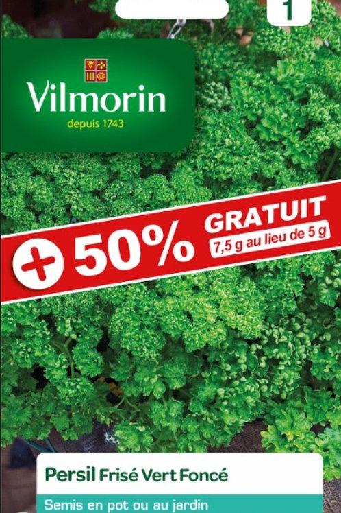 Graine persil frisé vert-foncé s1+50%vilmorin (ref : x71474)