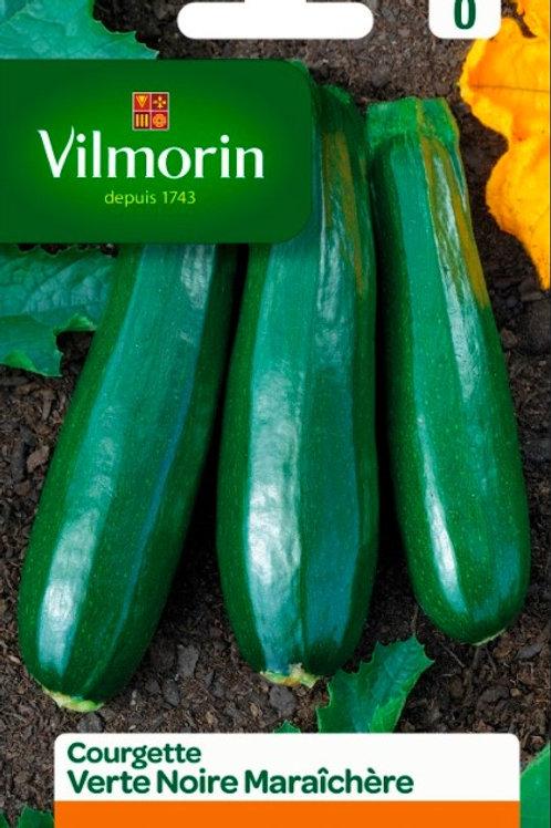 Graine courgette verte noire maraichère s.0 vilmorin (ref : w36521)