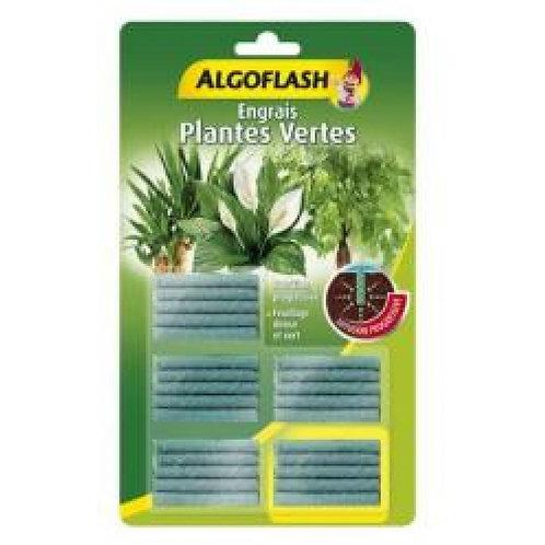 Bâtonnets engrais plantes vertes 25 bâtonnets algoflash (Ref : W03938)