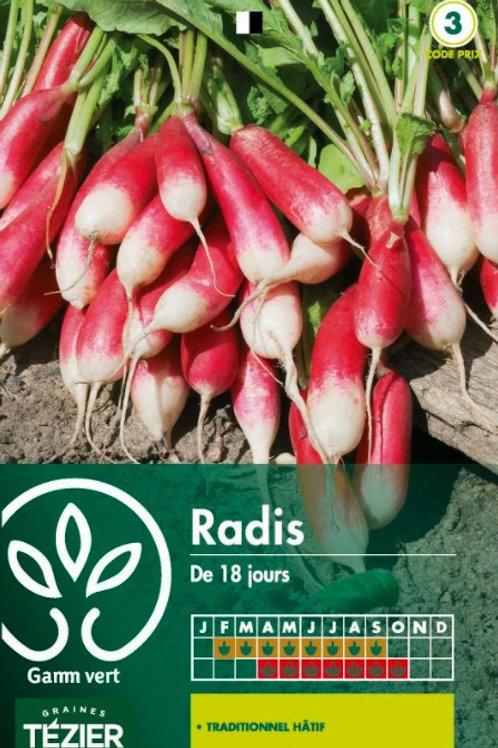 Graine radis de18 jours gd sachet Gamm Vert (ref : w36184)