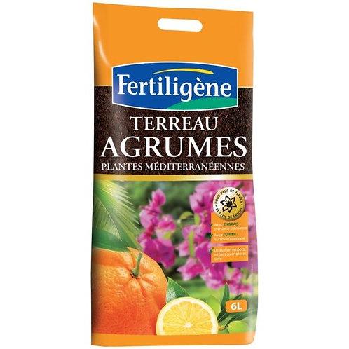 Terreau agrumes 6l fertiligène (ref : w72862)