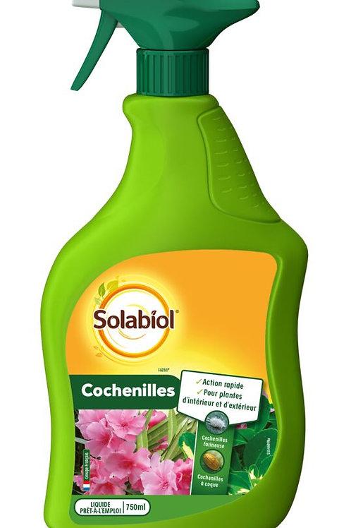 Anti cochenilles spray 750ml solabiol (ref : x88844)