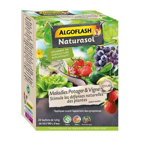 Anti maladies potager et vigne 25g algoflash (Ref : X82623)
