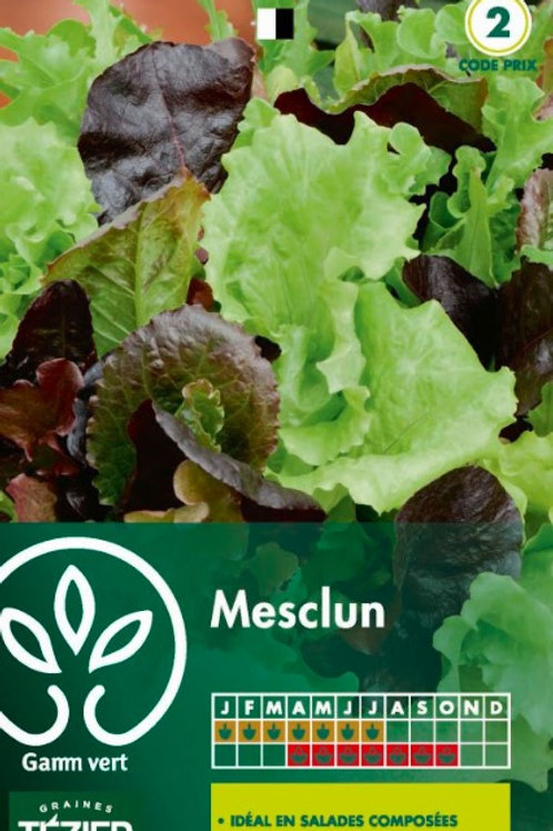 Graine mesclun s.2 Gamm Vert (ref : w36079)