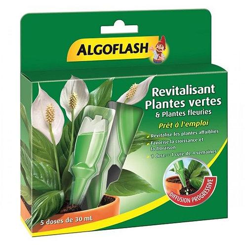 Engrais monodose x5 plantes vertes et fleuries 30 ml algoflash (Ref : W78827)