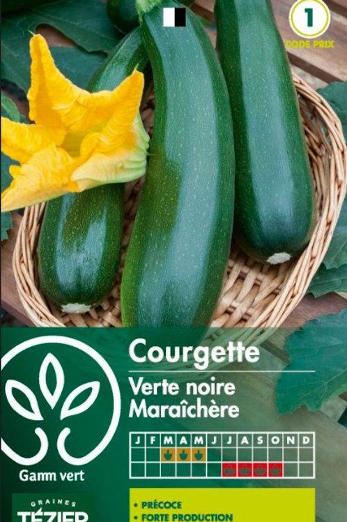 Graine courgette verte maraichère s.1 Gamm Vert (ref : w35986)