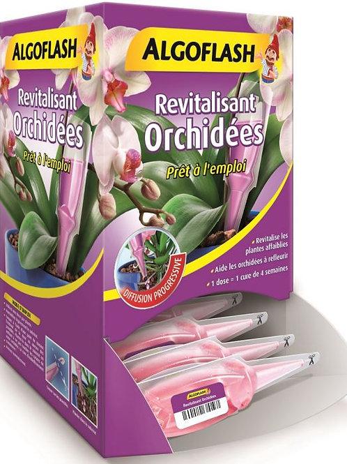 Engrais monodose revitalisante orchidées 30 ml algoflash (Ref : W78825)
