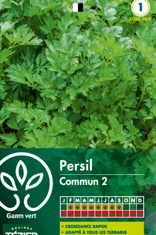 Graine persil commun simple s.1 Gamm Vert (ref : w36120)