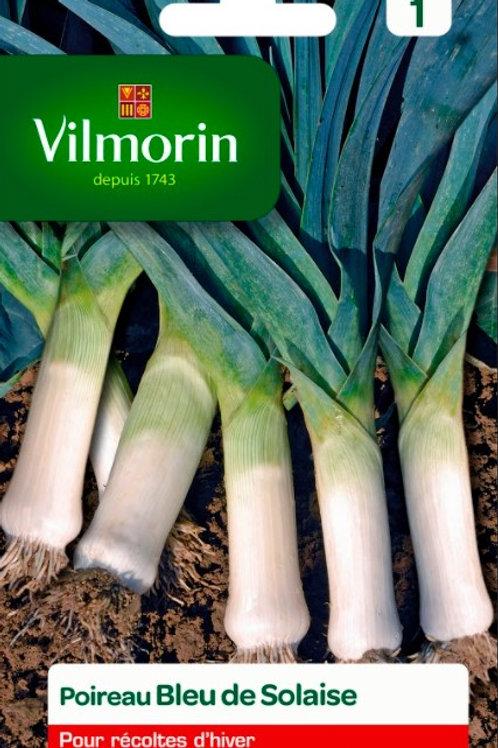 Graine poireau bleu de solaise s.1 vilmorin (ref : w46381)