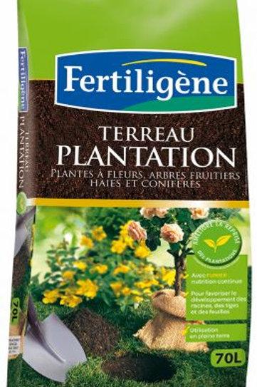 Terreau plantation 70l or brun (ref : 435872)