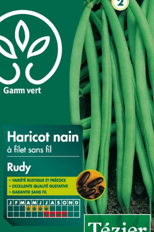 Graine haricot rudy 200g s.2 Gamm Vert (ref : w36037)