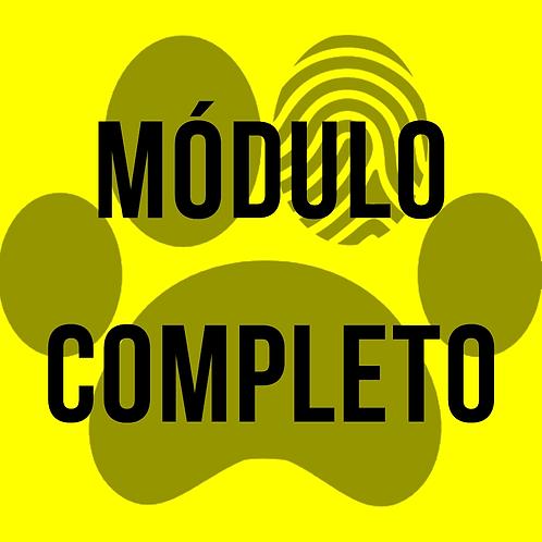 Curso online - Veterinária Forense - Módulo Completo