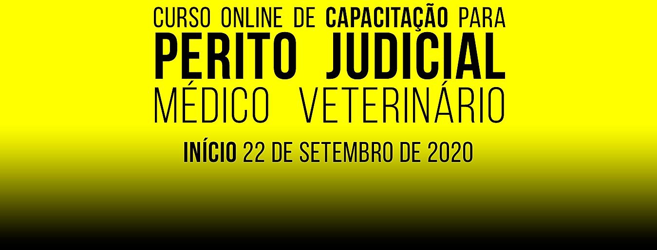 site perito judicial.png