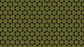 background-mandala-patinha.png