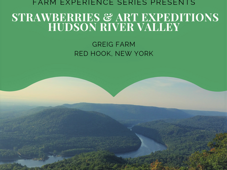 Strawberry Picking & Art Expeditions In The Hudson Valley