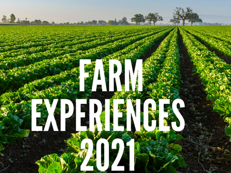 Looking Ahead - 2021 Farm Experiences
