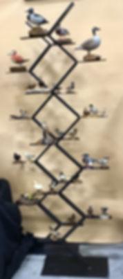 2019 SP Tanning Birds.jpg