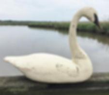 2019 SP Meekins SOLD Swan.JPG