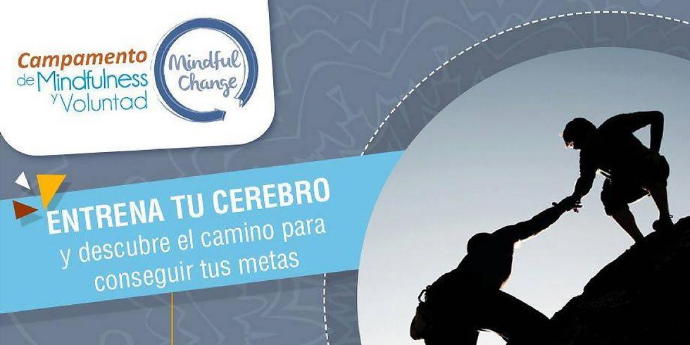 CAMPAMENTO DE MINDFULNESS Y VOLUNTAD
