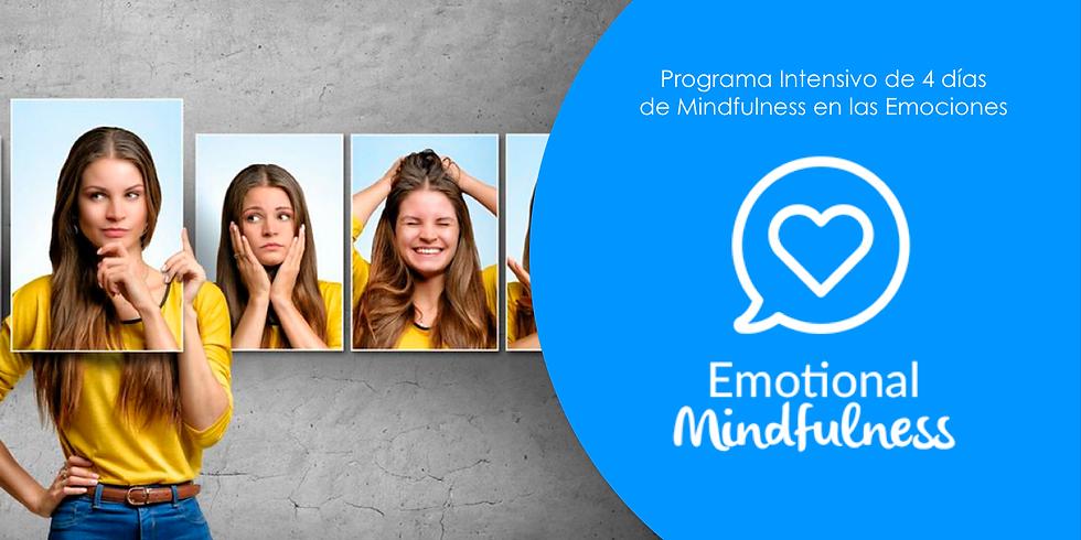 EMOTIONAL MINDFULNESS EN MEDELLÍN - PROGRAMA INTENSIVO DE 4 DÍAS