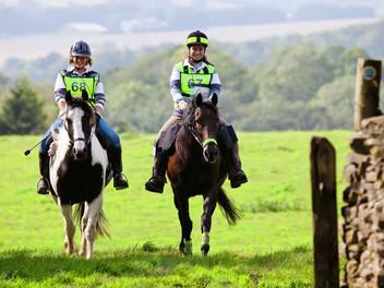 Vet swaps an ex-racehorse, a Shetland and a Connemara to bitless
