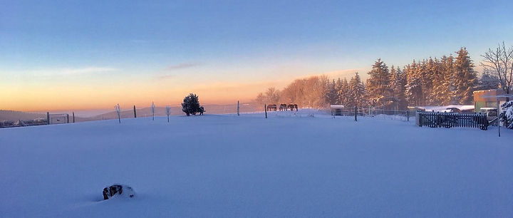 Winter-uitzicht-tuin-achter-1.jpg