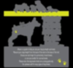 Dog size breeds-01.png
