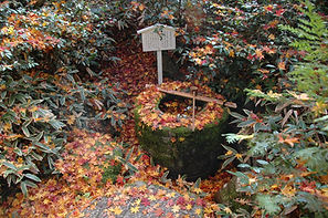 Koto-on (Templo de Daitoku) Kioto (23).j