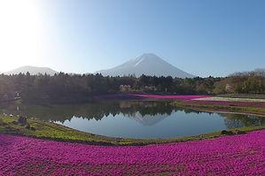 jomc_p_yamanashi_0000016.jpg