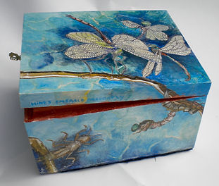 hines Emerald Dragon fly10.jpg