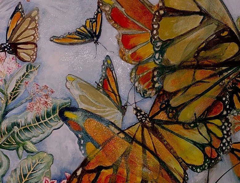 Monarch& Milkweed.jpg