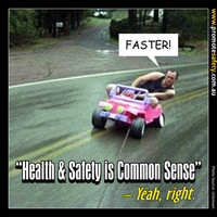 Health & Safety is Common Sense Meme #10