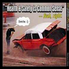 Health & Safety is Common Sense Meme #1.