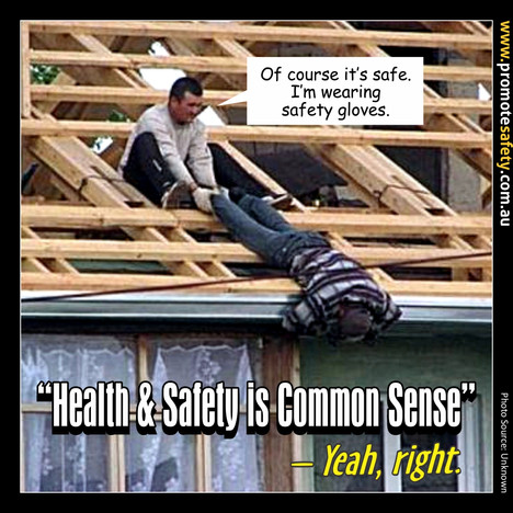 Health & Safety is Common Sense Meme #7.