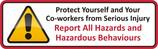 OHS Graphics Report Hazards.jpg