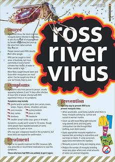 Ross River Virus Safety Poster.jpg