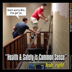 Health & Safety is Common Sense Meme #5.