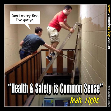 Health & Safety is Common Sense Meme #5.
