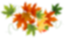 Autumn_Transparent_Leaves.png