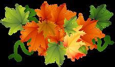 Autumn_Transparent_Leaves.png